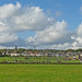 Small photo of Siddal Rugby Club