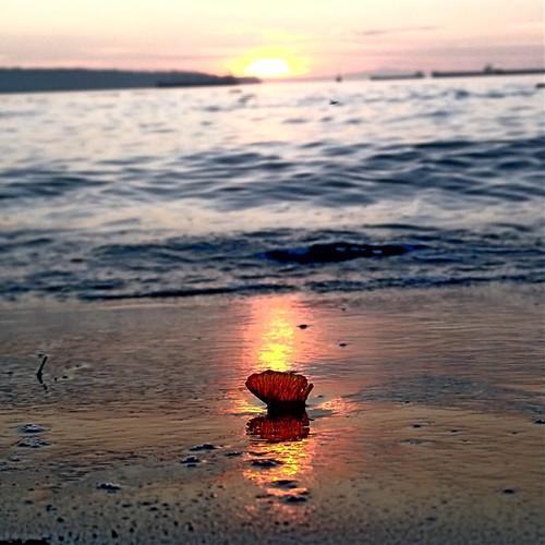 Sunset English Bay, that is a Leaf  in the sand   . #sunset #englishbay #beach #leaf #frenweh #wanderlust #travel #foodie #foodporn #vagabond #explorer #traveler #passport #grateful #entrepreneur #vancouver #Canada #lumia1020 #Nokia #windowsphone #philinv