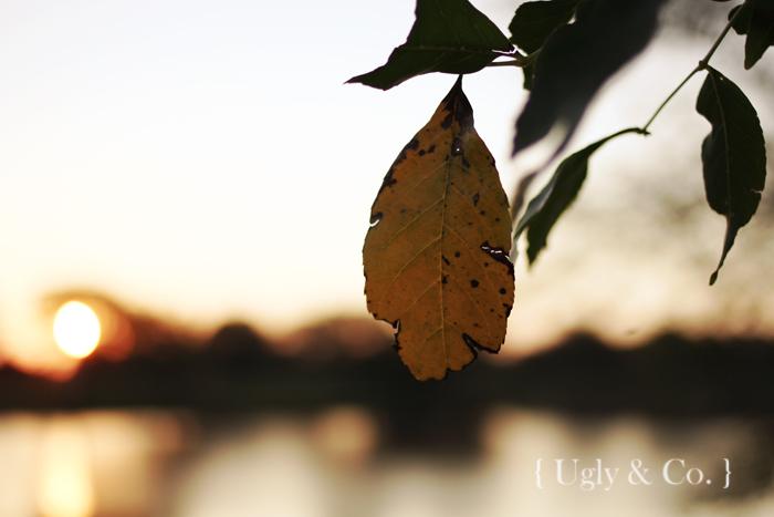 ugco_sept14_sunrise2