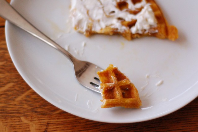 Spiced Butternut Squash Waffles by Eve Fox, The Garden of Eating, copyright 2014
