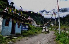 Tiny Buddhist Village