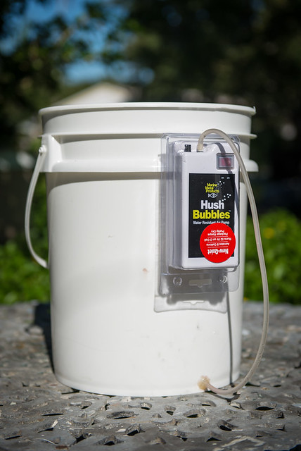 5 gallon bucket bait aerator modifycation