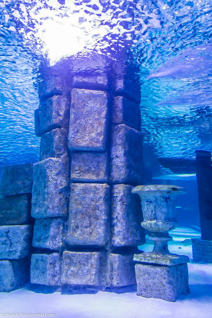 Анталья_аквариум-69