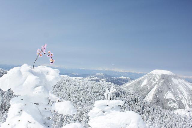 2014-03-09_00080_北横岳