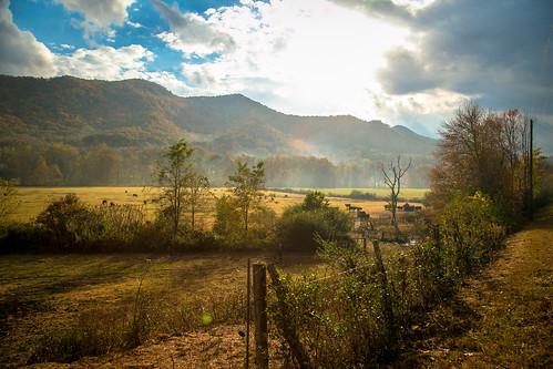 rural rabun county georgia pasture vintage fall foliage farm country roads dillard ga bettyscreek southernlife canon 6d 24105mml lens