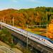 Hokuriku Shinkansen Autumn 2016 (E7 Series Train Set F4) by yamakox