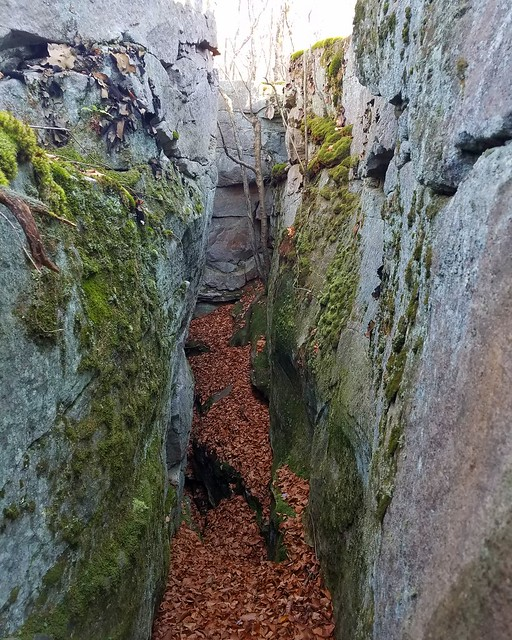 Rock maze at Frozen Run Gorge, Loyalsock State Forest