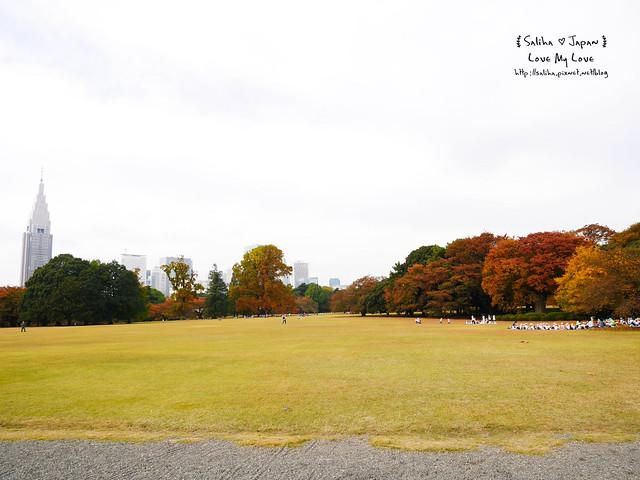日本東京自由行新宿御苑庭園景點 (4)