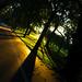 Edinburgh Meadows at Sunrise by Patrick_Down