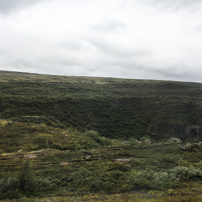 Iceland_Spiegeleule_August2014 077