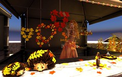 Rayheart Booth - Fall Fair 2014