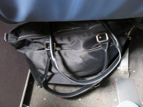 The bag fits under most airline seats
