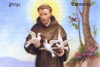 Risultati immagini per s.francesco d'assisi