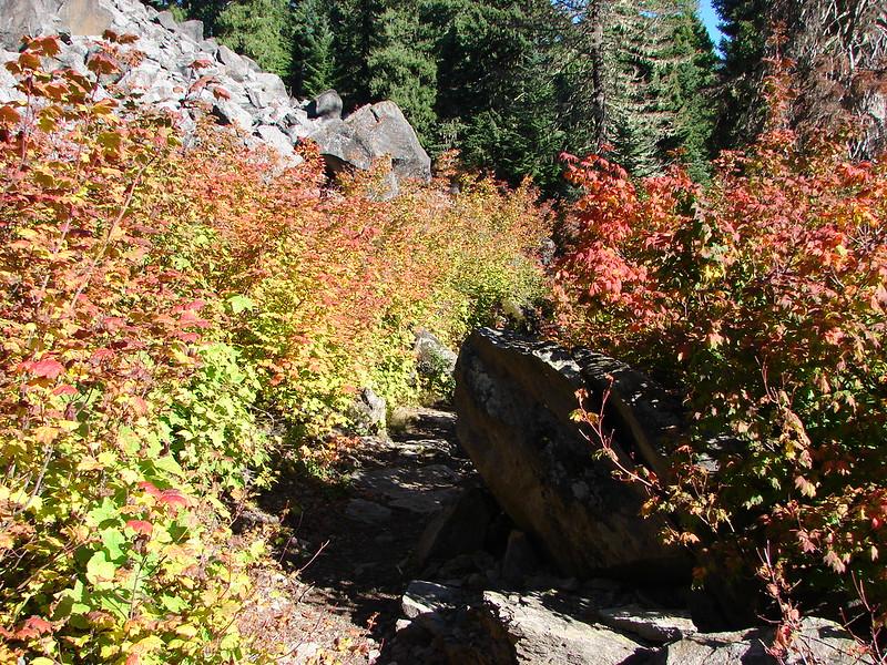 Fall colors along Marion Lake