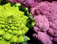Romanesco Broccoli and Purple Cauliflower