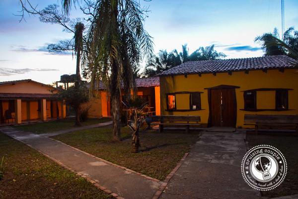 Jaguar Ecological Reserve Pantanal