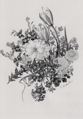 春の花々(ヘリオフェラ、アーモンドなど)