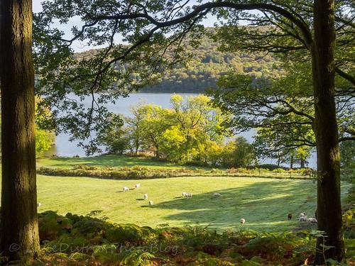 湖水地方 イギリス 自然 風景