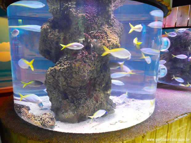 Sea Life London Aquarium 3