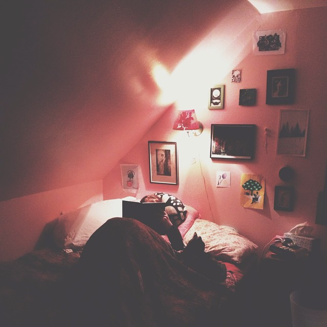 She's back in her newly peachy-pink room, with her cat and a good book. Sweet dreams await.