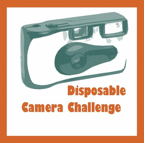 disposable_camera