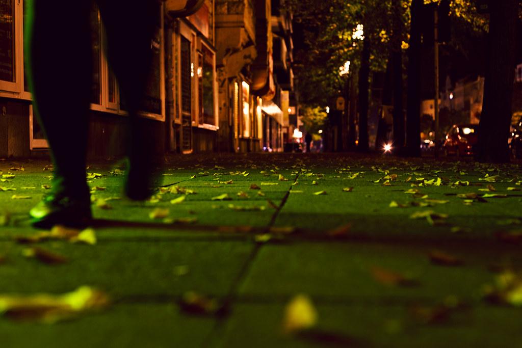 94/365 - autumn