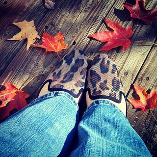 Happy almost birthday to me... New shoes, and they were a steal! #NineWest #leopard #shoes #fall #leaves #happyfeet