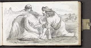 Cutting up Buffalo / Dépeçage du bison