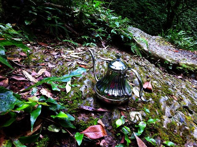 森林系細嘴壺