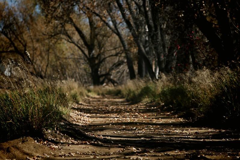 2014 10 25 - Ouzel Trail - DMTI - 9S3A3769