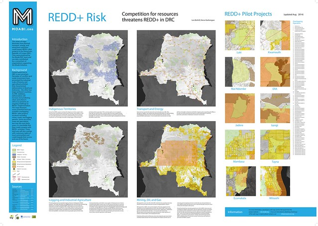 The REDD+ Potential Risks Poster