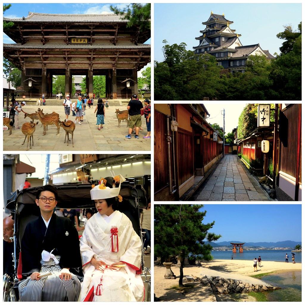 Visitas desde Kyoto en 5 días