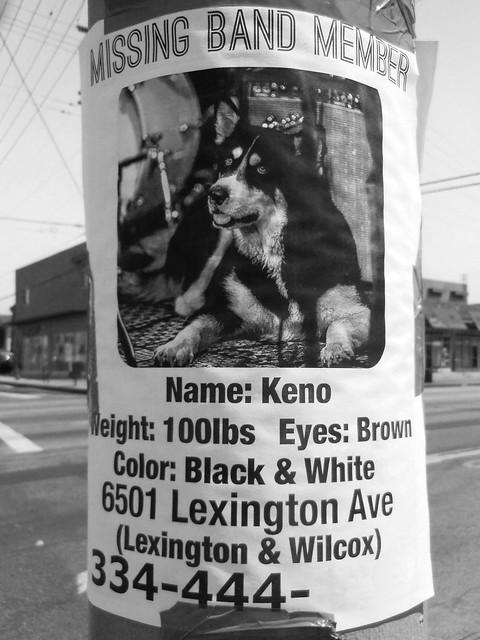 Lexington keno