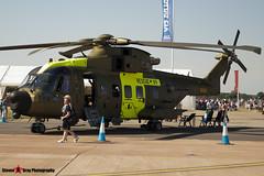 M-509 - 50148 512009 DEN09  - Danish Air Force - Agusta Westland EH-101 Mk512 Merlin Joint Supporter - Fairford RIAT 2006 - Steven Gray - CRW_1990