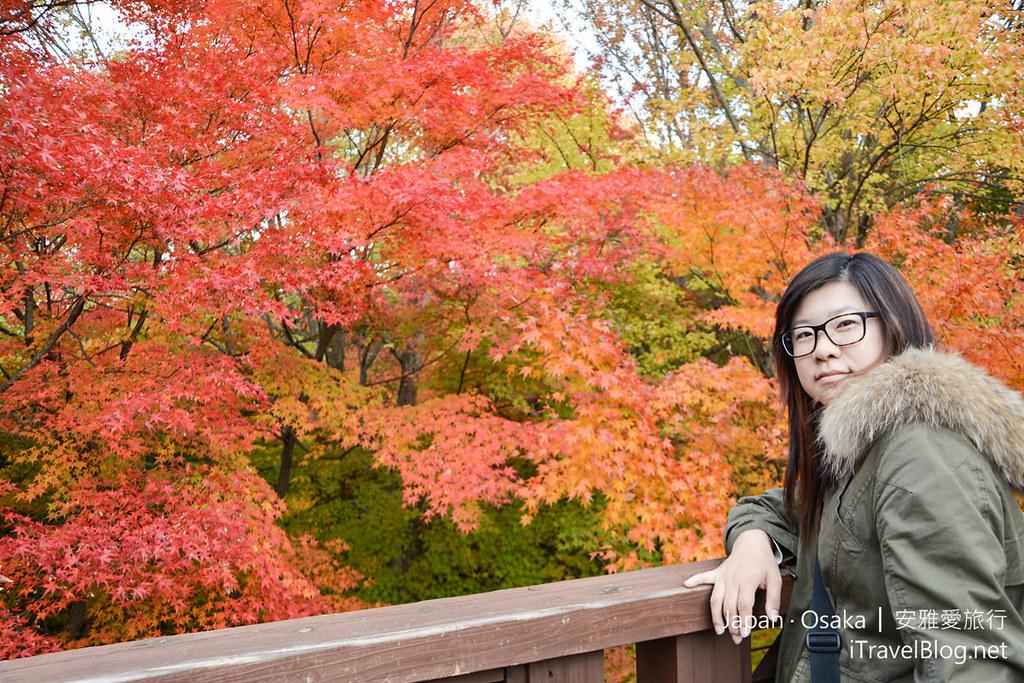 大阪赏枫 万博纪念公园 红叶庭园 23