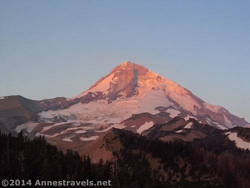 The best of Mt. Hood that morning. Usually it is pure gold. Cloud Cap Campground, Mt. Hood National Forest, Oregon