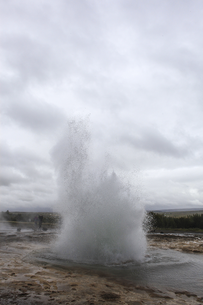 Iceland_Spiegeleule_August2014 064