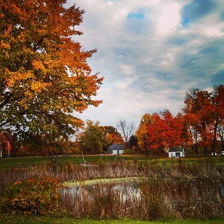 There is nothing better than fall in New England! #fall #newhampshire #trees #leaves #SunnycrestFarm #newengland #leafpeeping #farm #appleorchard #autumn