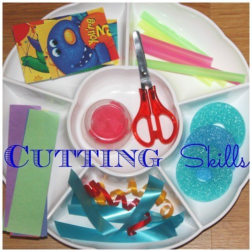 Cutting Skills Tray (Photo from Little Bins for Little Hands)