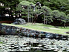 Pond with a stone bridge