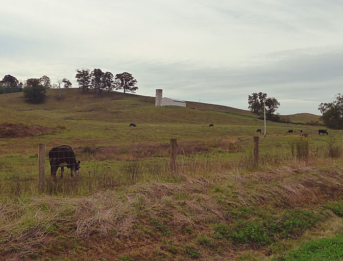 Virginia country roads