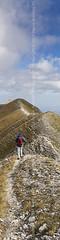 Parco Nazionale dei Monti Sibillini (04079)