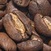 Coffee Beans by Evoljo