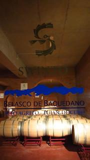 Wine Tasting at Belasco de Baquedano in Luján de Cuyo, Mendoza, Argentina