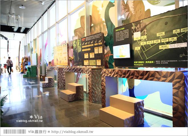 【台南南科景點】樹谷生活科學館~超大的劍齒象化石!有趣又能長知識的博物館!7