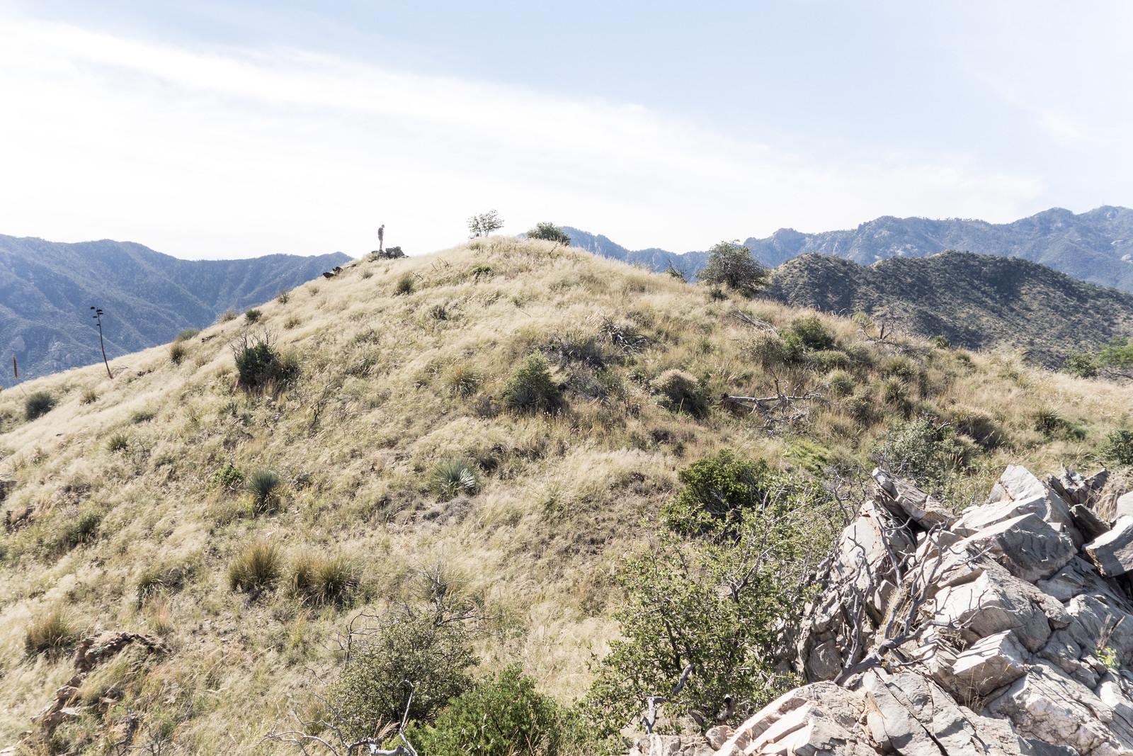 1410 Evans Mountain