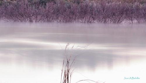 Laguna de seda y raso