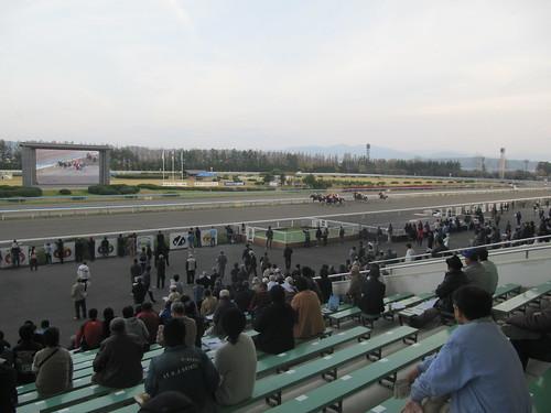 金沢競馬場の北國王冠のレースの模様