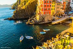Cinque Terre (Italie) Octobre 2015