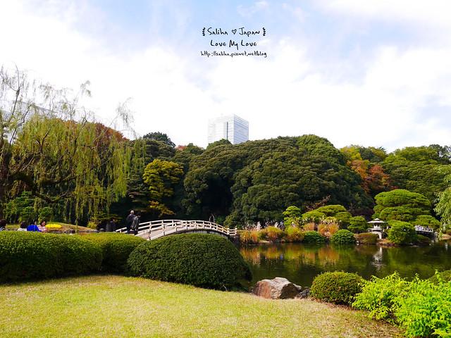 日本東京自由行新宿御苑庭園景點 (17)